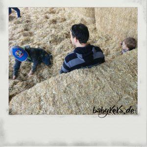 Der Liebste & die Jungs hatten großen Spaß im Stroh, während ich Blogger-Gespräche führen konnte...