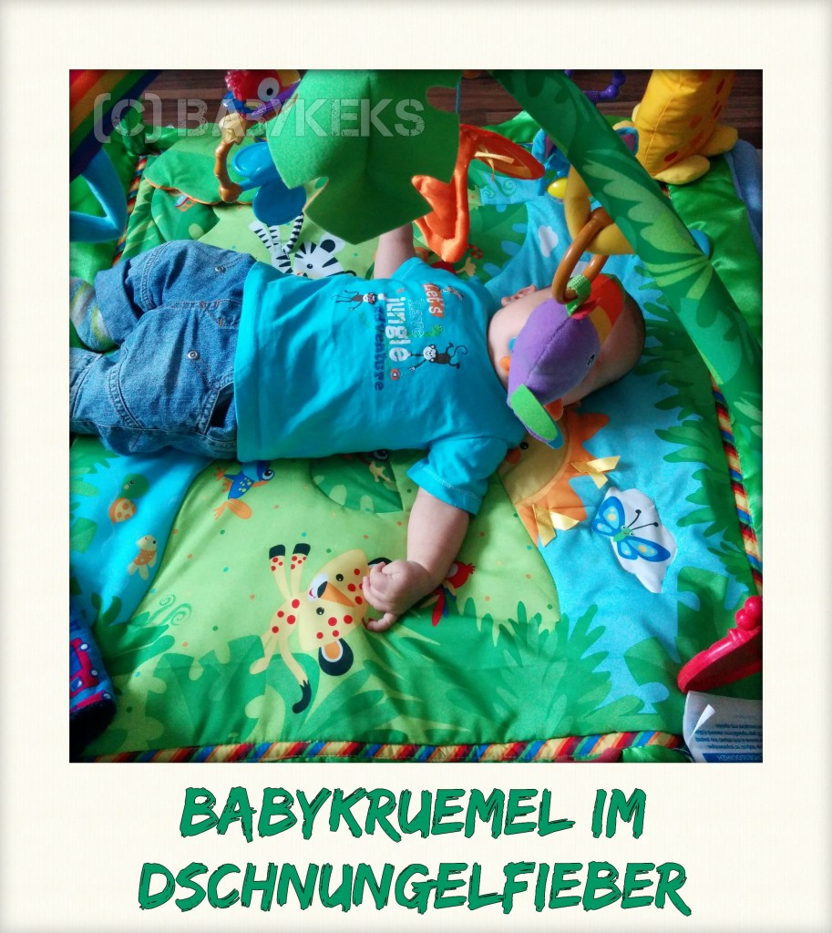 Babykeks_Blog_Dschungelfieber.jpg