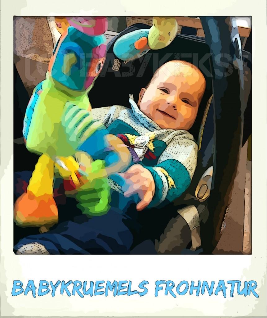 Babykeks_Blog_Frohnatur.jpg