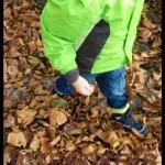 Babykeks_Blog_Vikings_BOA2.jpg