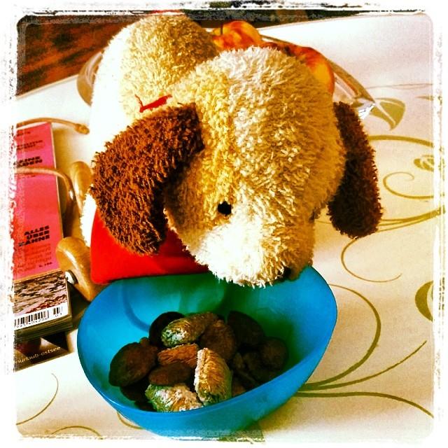 Babykeks' Freund Back up musste heute unbedingt auch mitessen ;-)