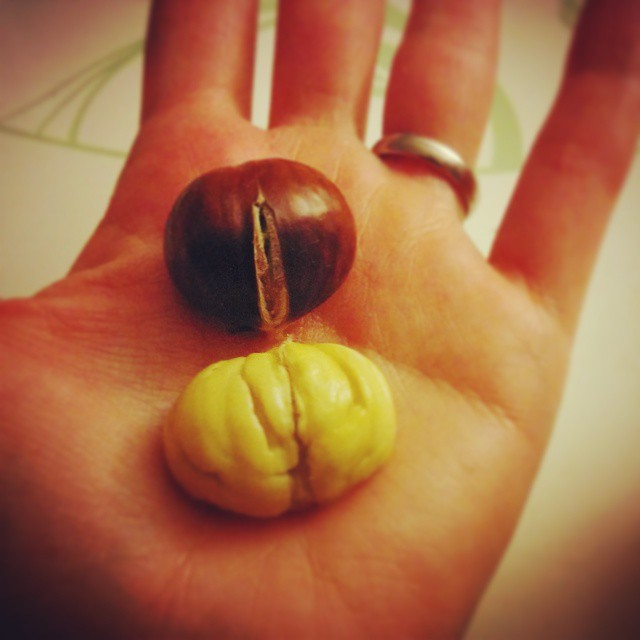 Juhu der #Herbst bringt so viele leckere Dinge. Neben Kürbis gibt es jetzt auch endlich wieder #Maronen