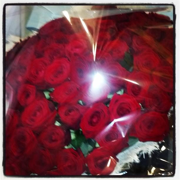 Ach könnte ich doch diesen wunderbaren Duft mit euch teilen... 70 rote Rosen