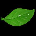 tealife2_icon_01
